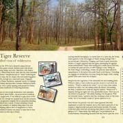 Indian wildlife guidebook, Indian Wildlife, Kanha National Park, Bandhavgarh National Park, Pench, Panna, Satpura